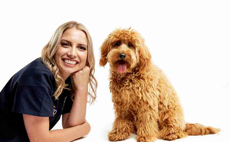 grain allergies in dogs