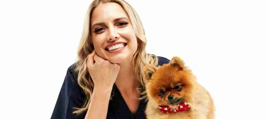 canine dental disease
